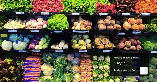 Wireless Sensors Give Supermarket Visibility and Control for Operational Excellence